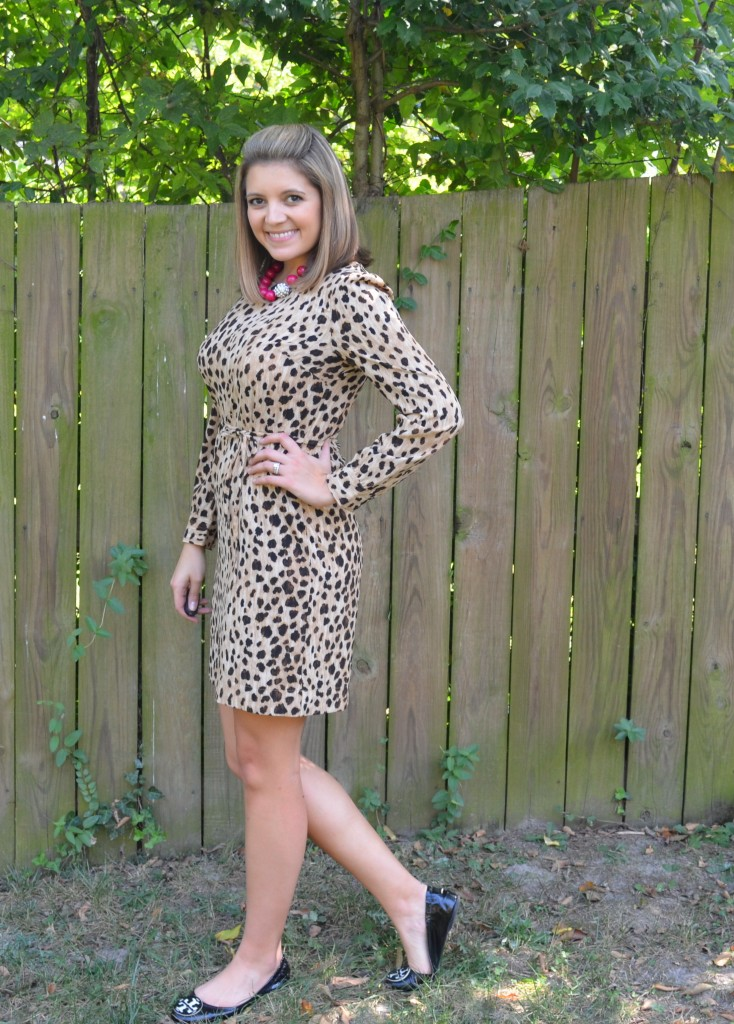long-sleeved leopard dress