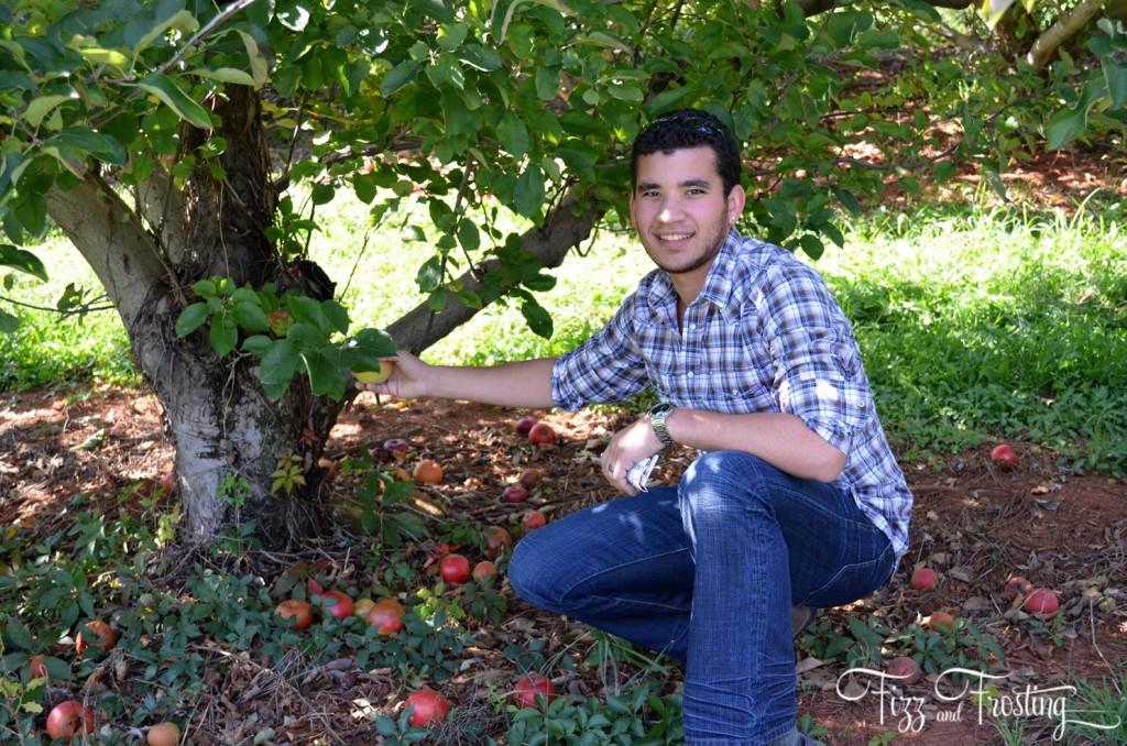 Carter Mountain Fuji Apples