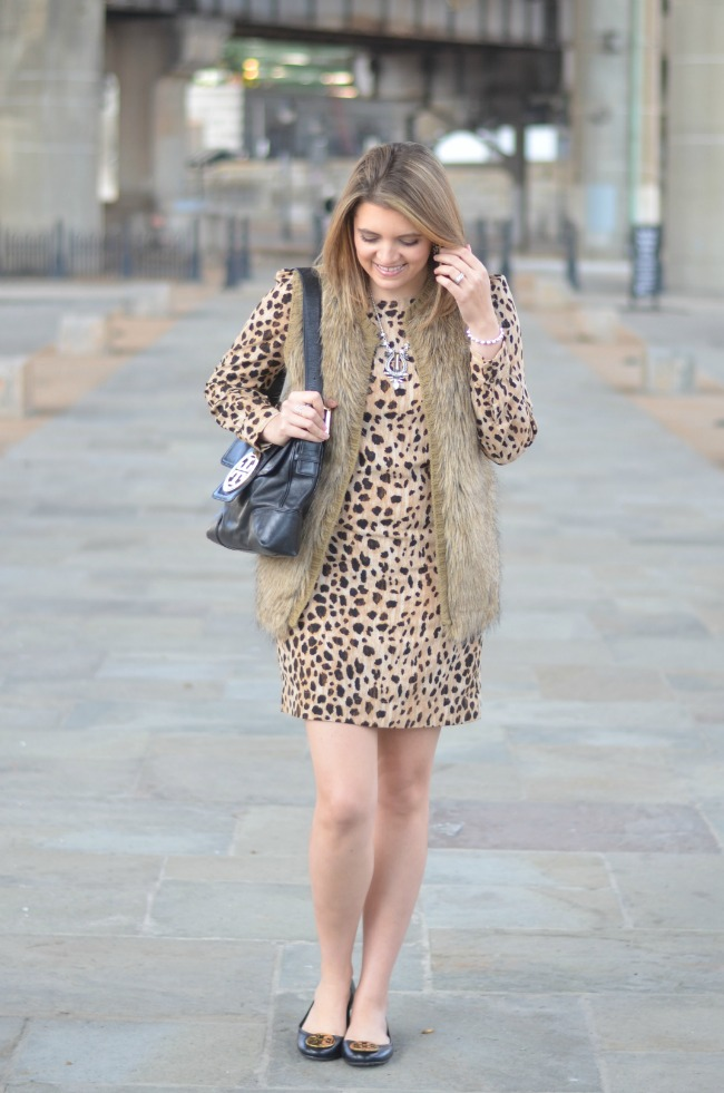 target cheetah print dress