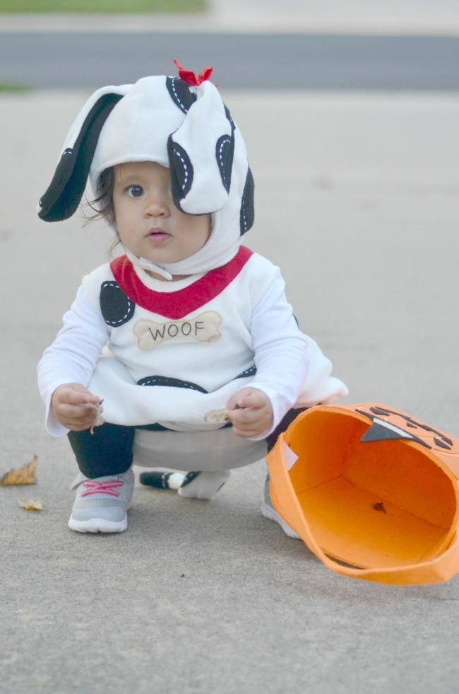 pottery barn dog costume via fizzandfrosting.com