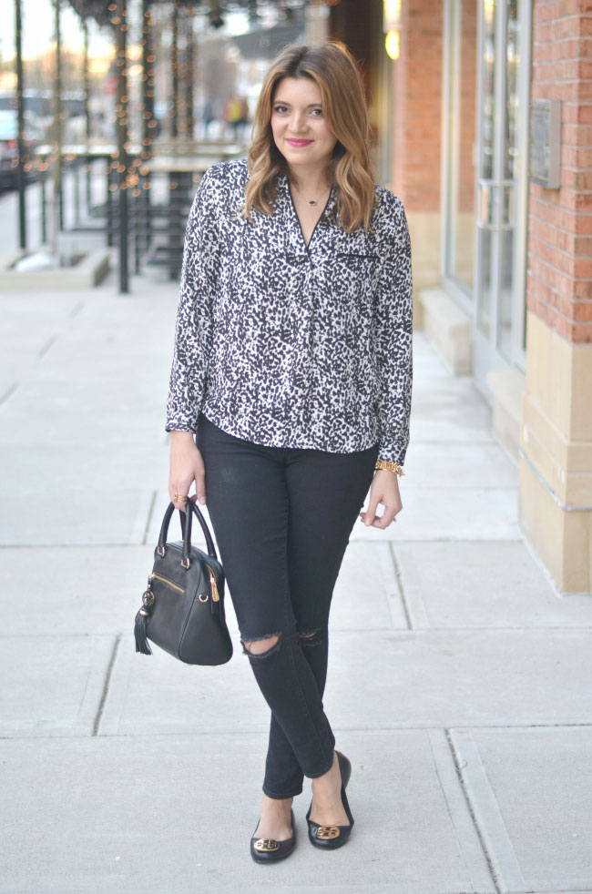 snow leopard, black distressed skinny jeans via fizzandfrosting.com
