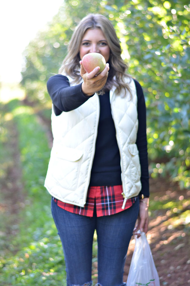 apple picking outfit - red plaid with jcrew excursion vest | www.fizzandfrosting.com