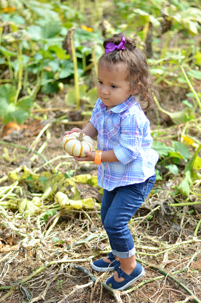 toddler girl pumpkin patch outfit - toddler plaid | www.fizzandfrosting.com