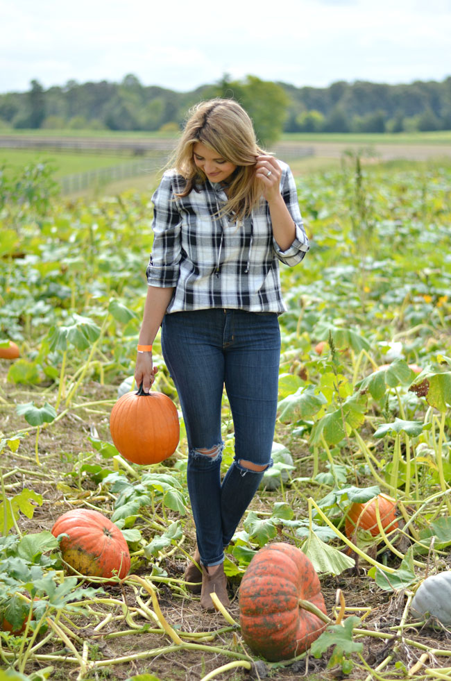 cute pumpkin patch outfit - lace up plaid top with distressed skinny jeans and booties | www.fizzandfrosting.com